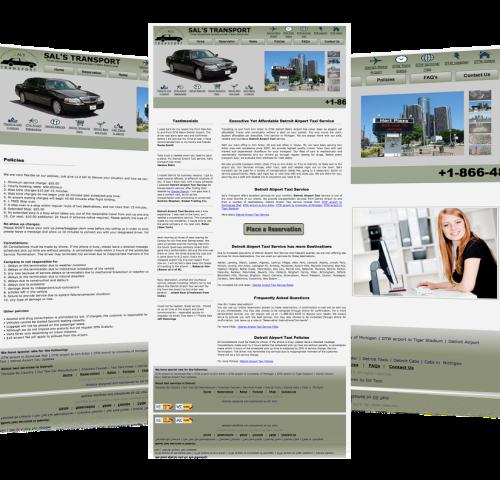 Website-Design-For-Salst