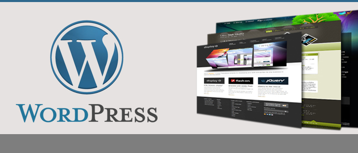 Wordpress web design Dubai